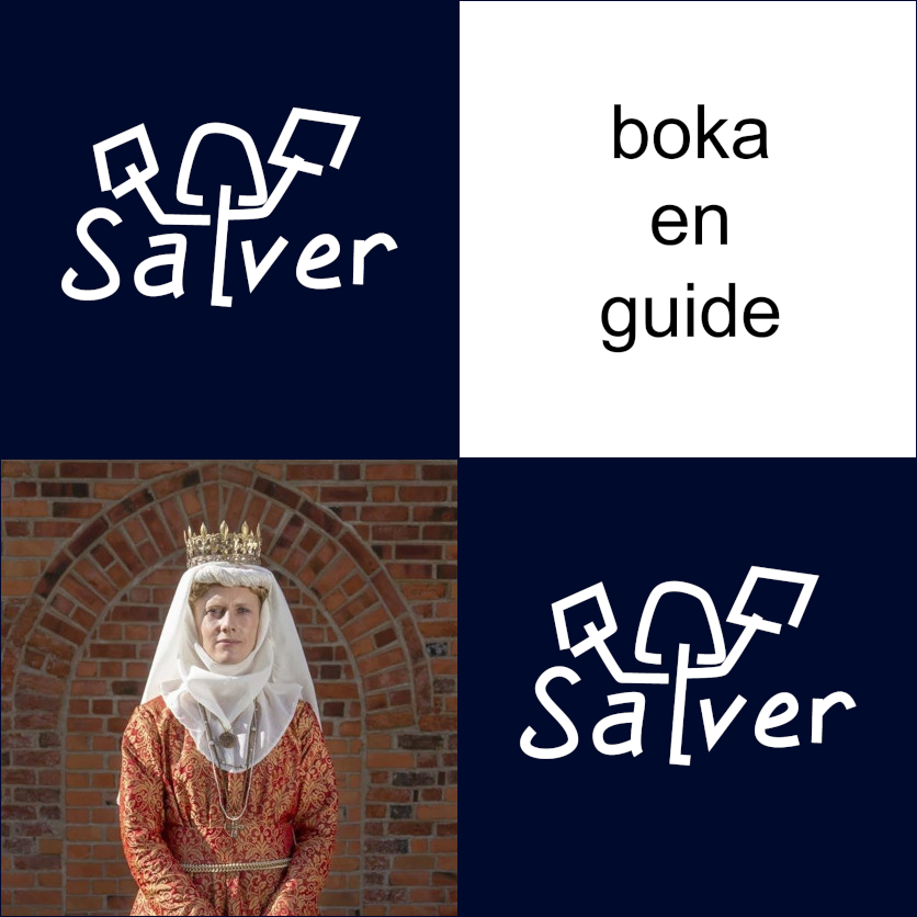 Salver - boka en guide